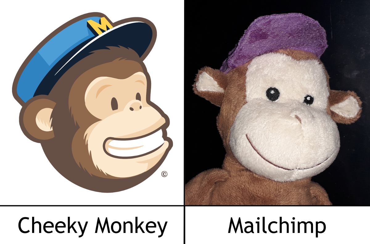 Cheeky Monkey does our Newsletter